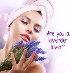 lavender lover2014 e1533415346959
