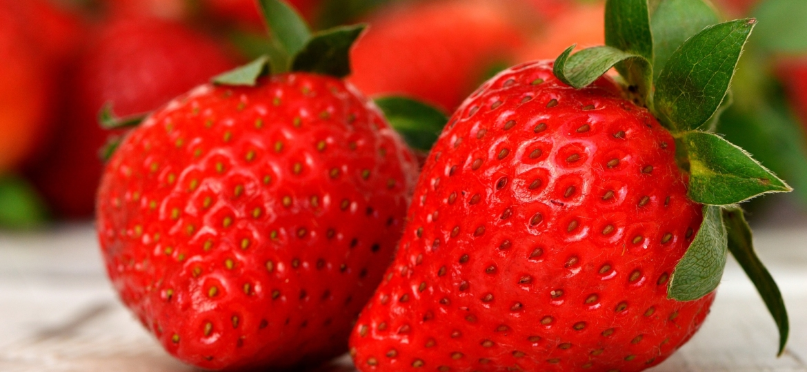The Secret of Strawberries The Beauty Berry